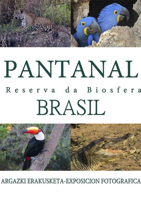 Pantanal-Reserva da Biosfera Brasil.jpg