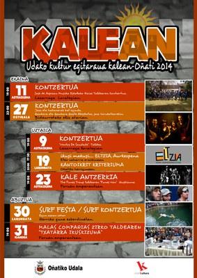 Kalean programa 2014